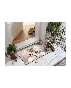 Salonlöwe Fussmatte Nosy Cat 50 cm x 75 cm