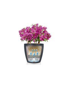 Lechuza Pflanzentopf CLASSICO Color 35 Braun