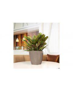 Lechuza Pflanzentopf Classico Premium 28 LS Braun