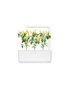Click and Grow Saatgut Gelber Chili