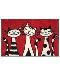 wash+dry Fussmatte Three Cats  50 cm x 75 cm