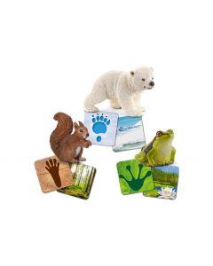 Schleich Spielzeugfigur Wild Life mit Lernkarten
