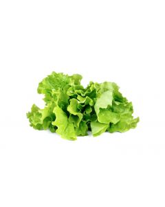 Click and Grow Saatgut Grüner Salat Nachfüllpackung 3er-Set