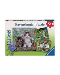 Ravensburger Puzzle Süsse Samtpfötchen